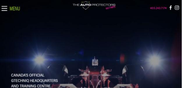The Auto Protectors
